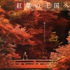 紅葉めぐり「阪急で紅葉の王国へ」2012パンフレット